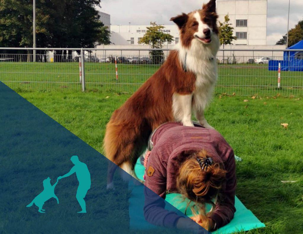 trainingen-samensportenmetjehond